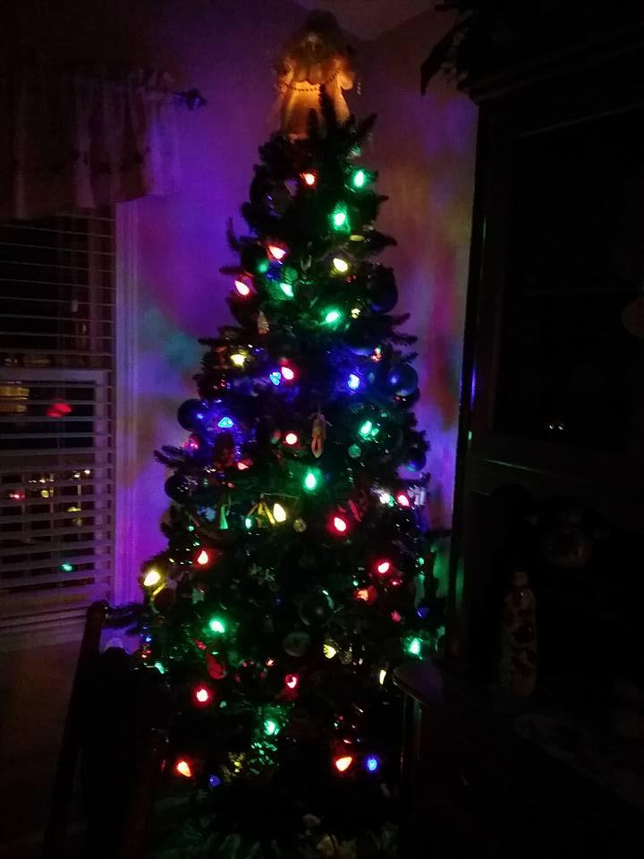 O' Christmas Tree: Is the Christmas Tree a Pagan or ...